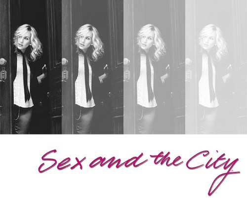 Essay sex and the city