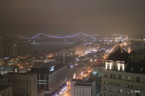 View from the Skybar Lounge, Detroit (photo by K.Sark)