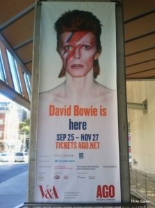 Bowie is here! (photo by K.Sark)