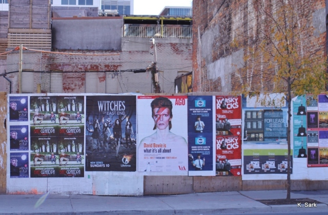 Bowie in Toronto (photo by K.Sark)
