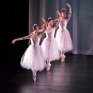 Ballet Victoria, The Gift, photo Dan Takahashi
